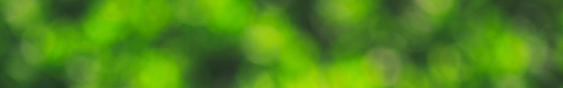 Vihreä bokeh